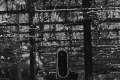 photographie-cinematographie-manon-plezent-S7